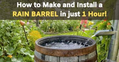 How to Make and Install a RAIN BARREL in just 1 Hour