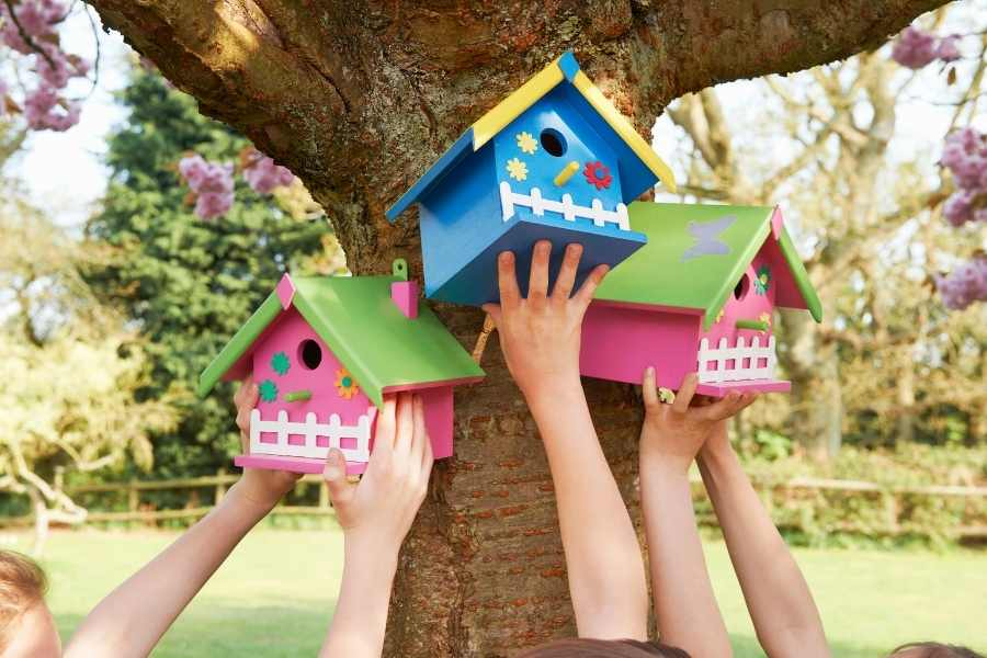 What Is the Best Time to Put Up Birdhouses for the Nesting Season