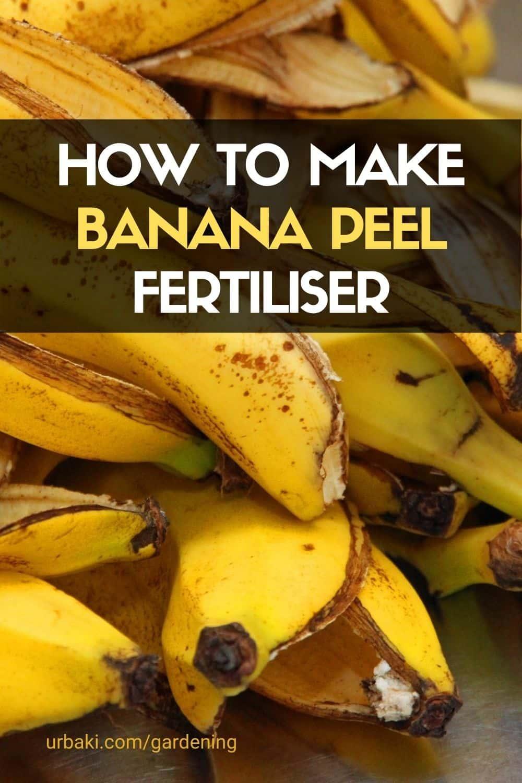How to Make Banana Peel Fertiliser
