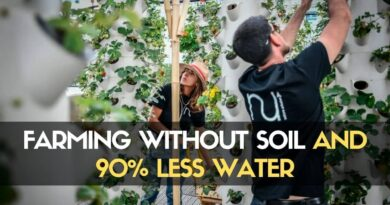 Farming Without Soil and 90% Less Water