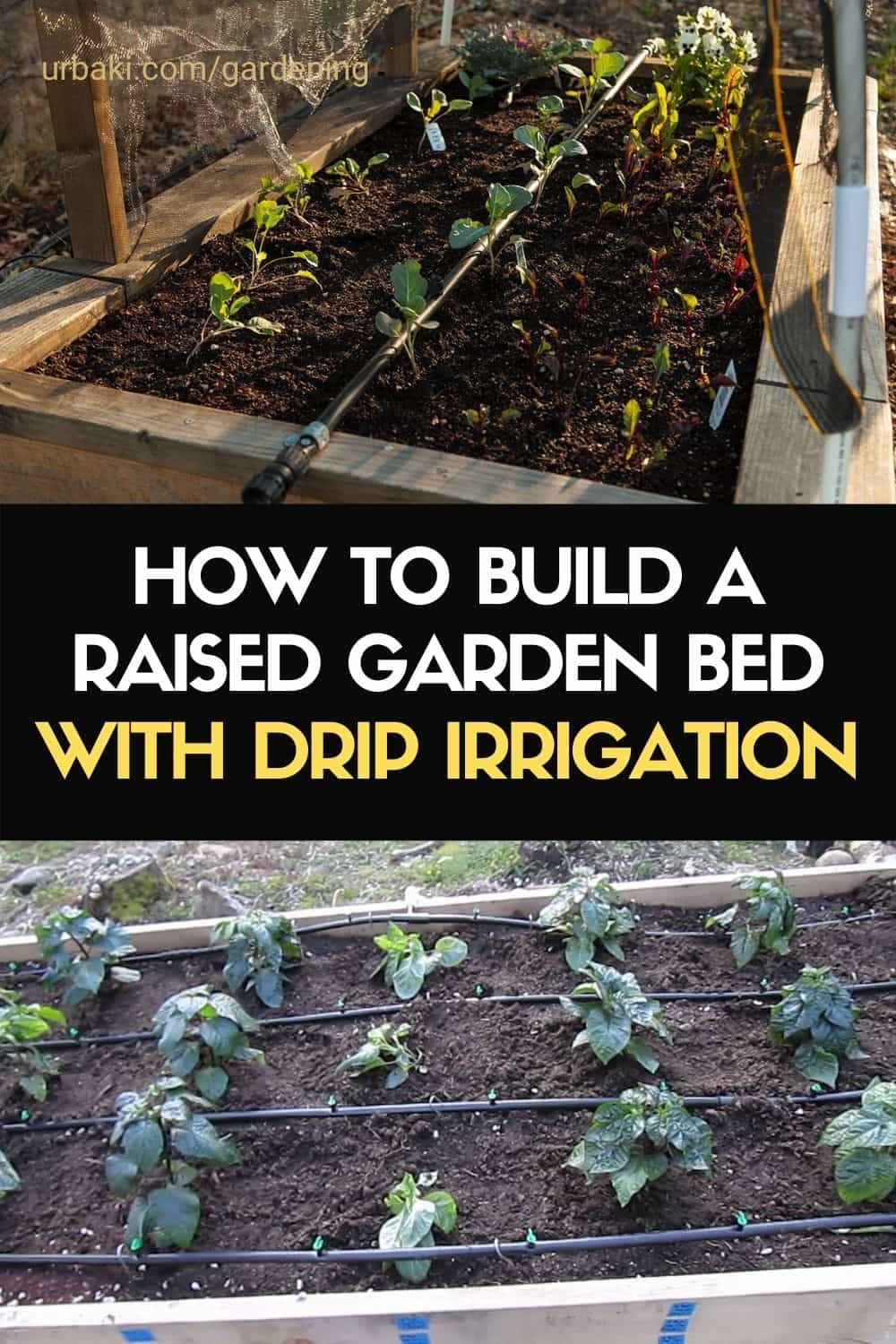 How To Build A Raised Garden Bed With Drip Irrigation