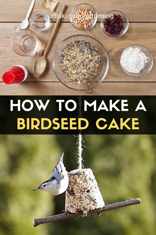 Birdseed Cake