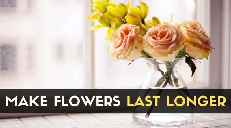 Flowers Last Longer
