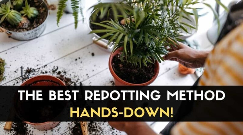 Repotting Method