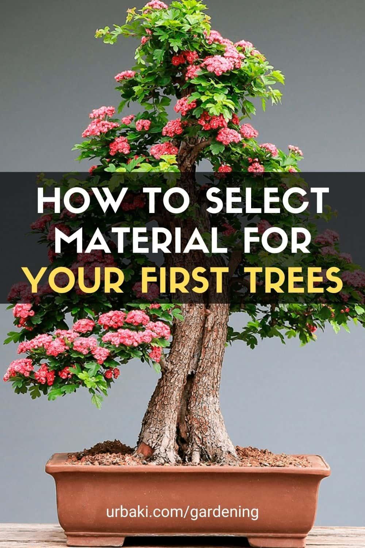 Select Material