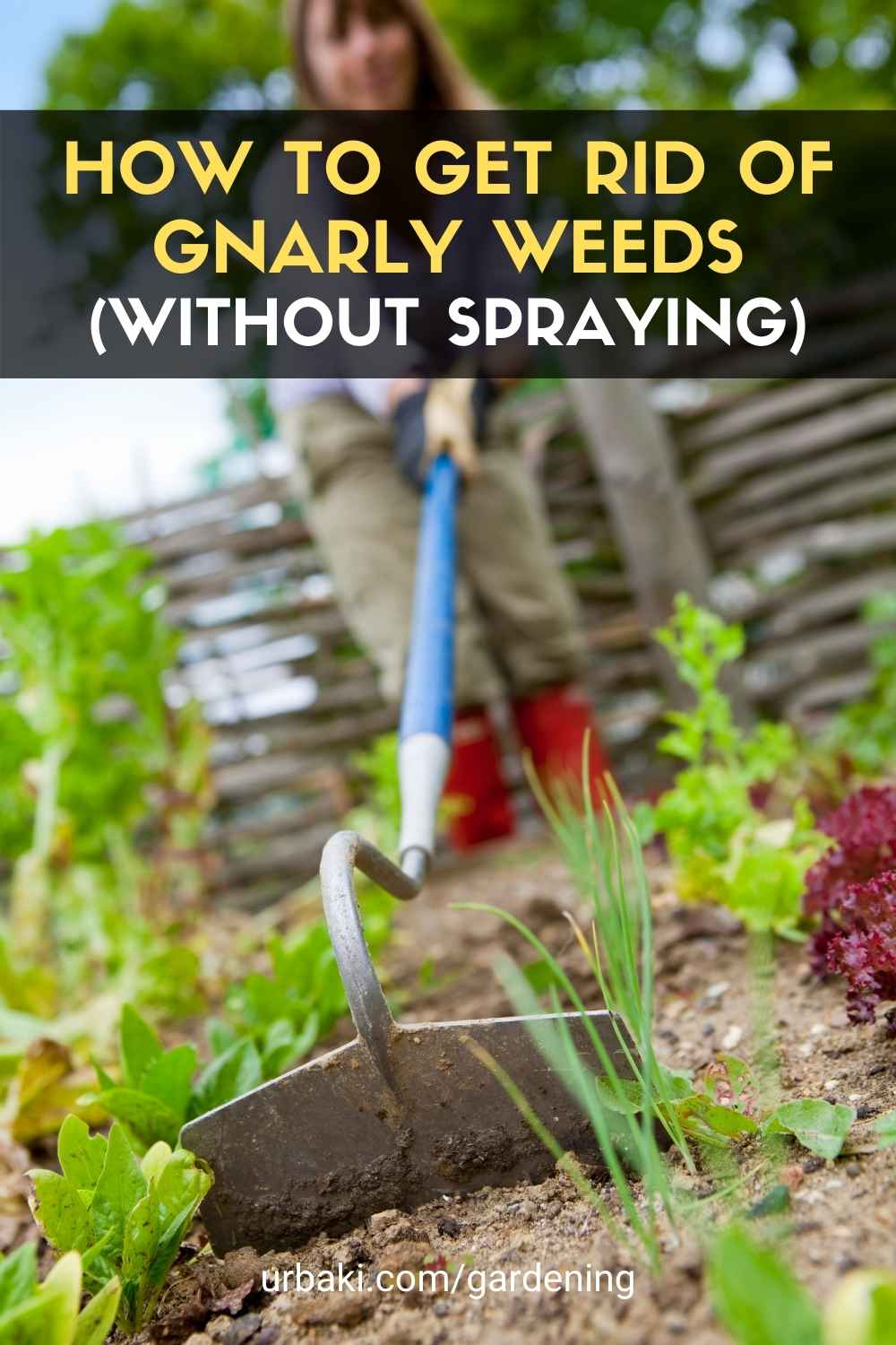 How To Get Rid Of Gnarly Weeds