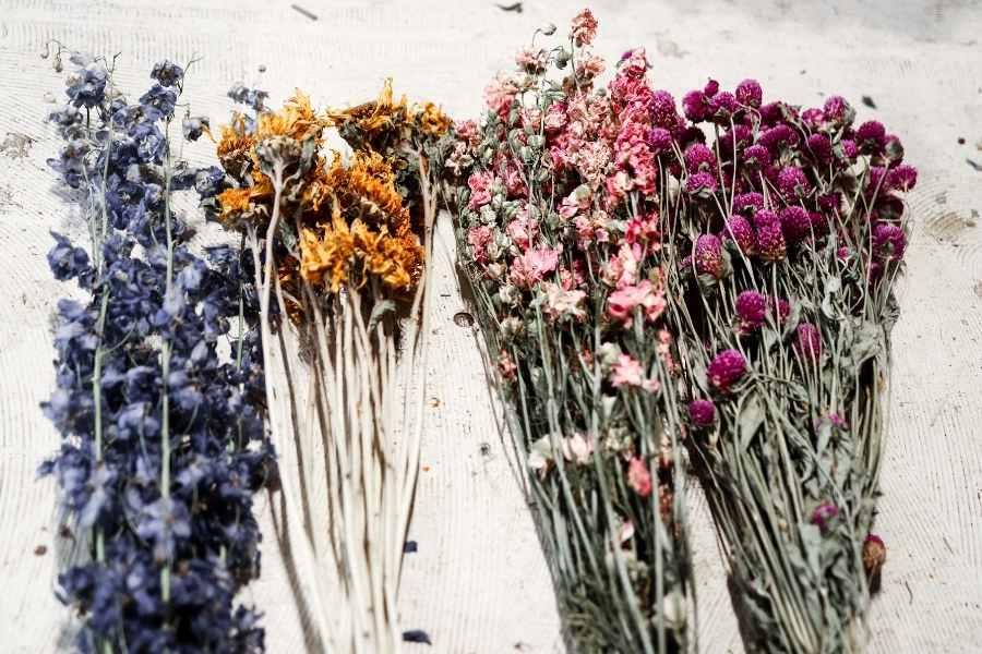flower dry