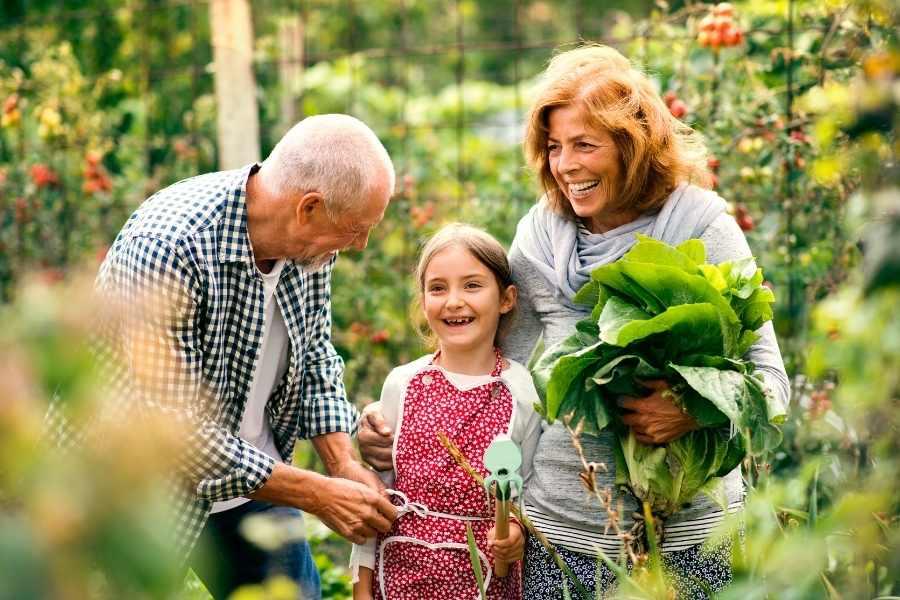 Gardening Boosts Wellbeing