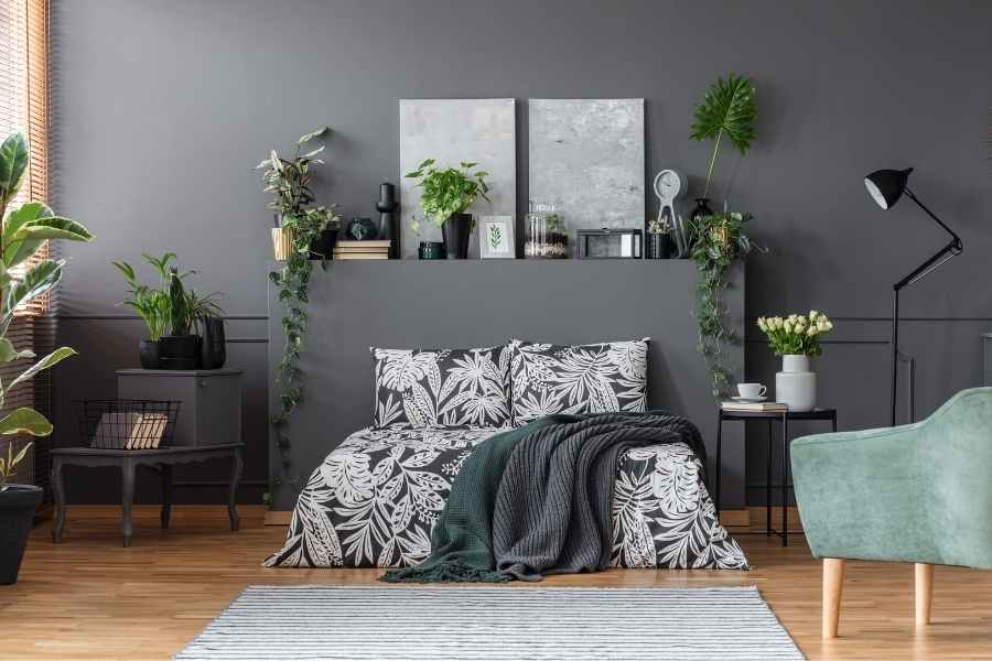 Plants for Your Bedroom