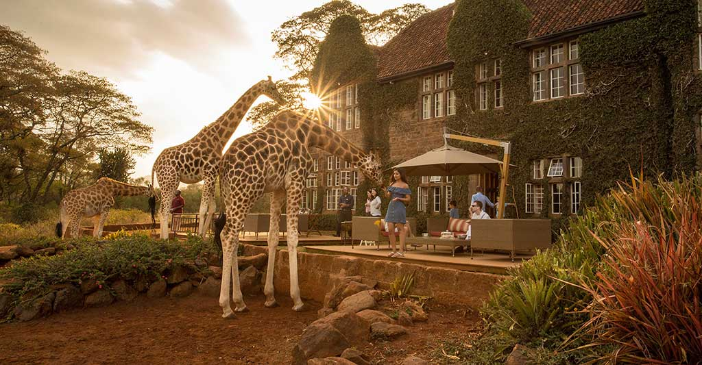 Giraffe Manor Nairobi, Share a Breakfast with Giraffes!