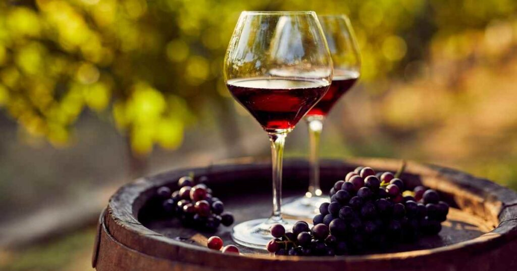 THE 8 BEST TUSCAN WINE TOURS